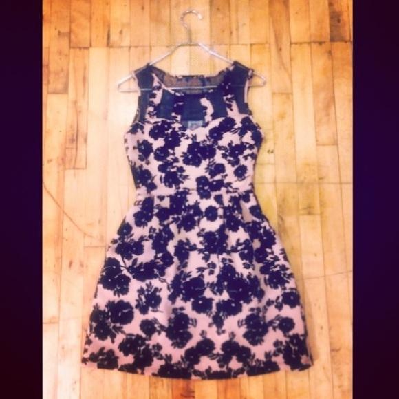 Sweet Storm Dresses & Skirts - NWT Pink and Black Velveteen Dress - Sweet Storm